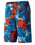 Boy's Solar Stream II Boardshorts