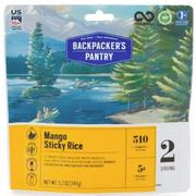 Mango Sticky Rice (double serving)