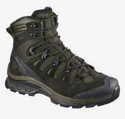 Quest 4D 3 GTX - Grape Leaf / Peat / Burnt Olive