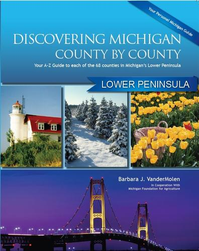 Discovering Michigan County By County : Lower Peninsula